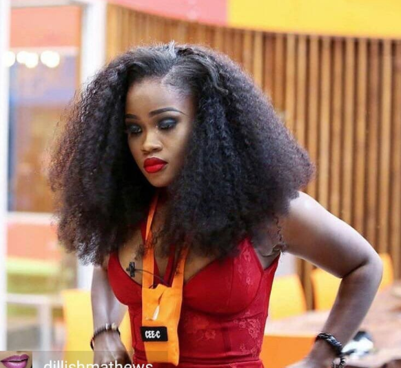 Cee-C has been declared the first BBNaija participant to make the worldwide Twitter trend.
