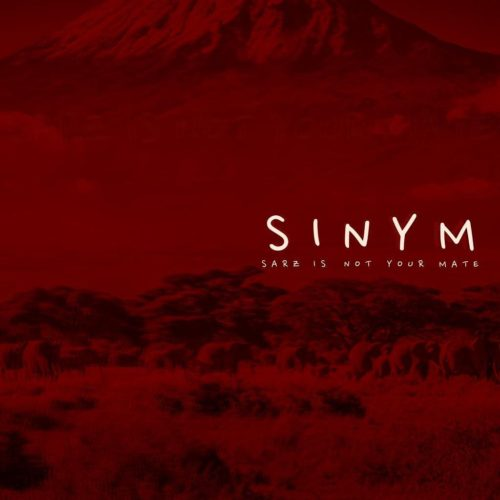 Sarz Releases Brand New EP – SINYM (Sarz Is Not Your Mate)