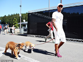Lewis Hamilton flies his pet dogs around the world by private jet (photos
