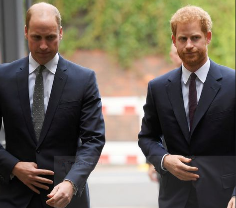 William and I are on different paths' – Prince Harry acknowledges tensions with his brother