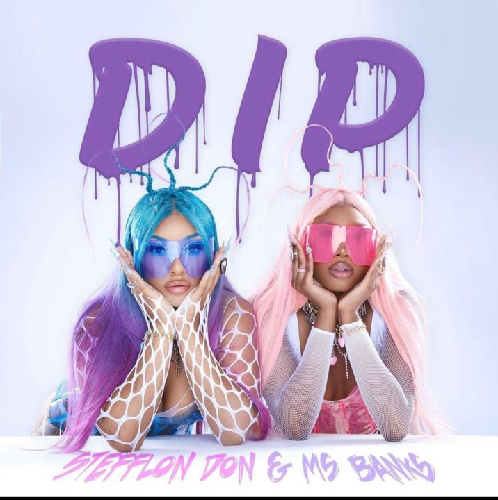 Stefflon Don Features Ms Banks In New Single 'Dip'   LISTEN
